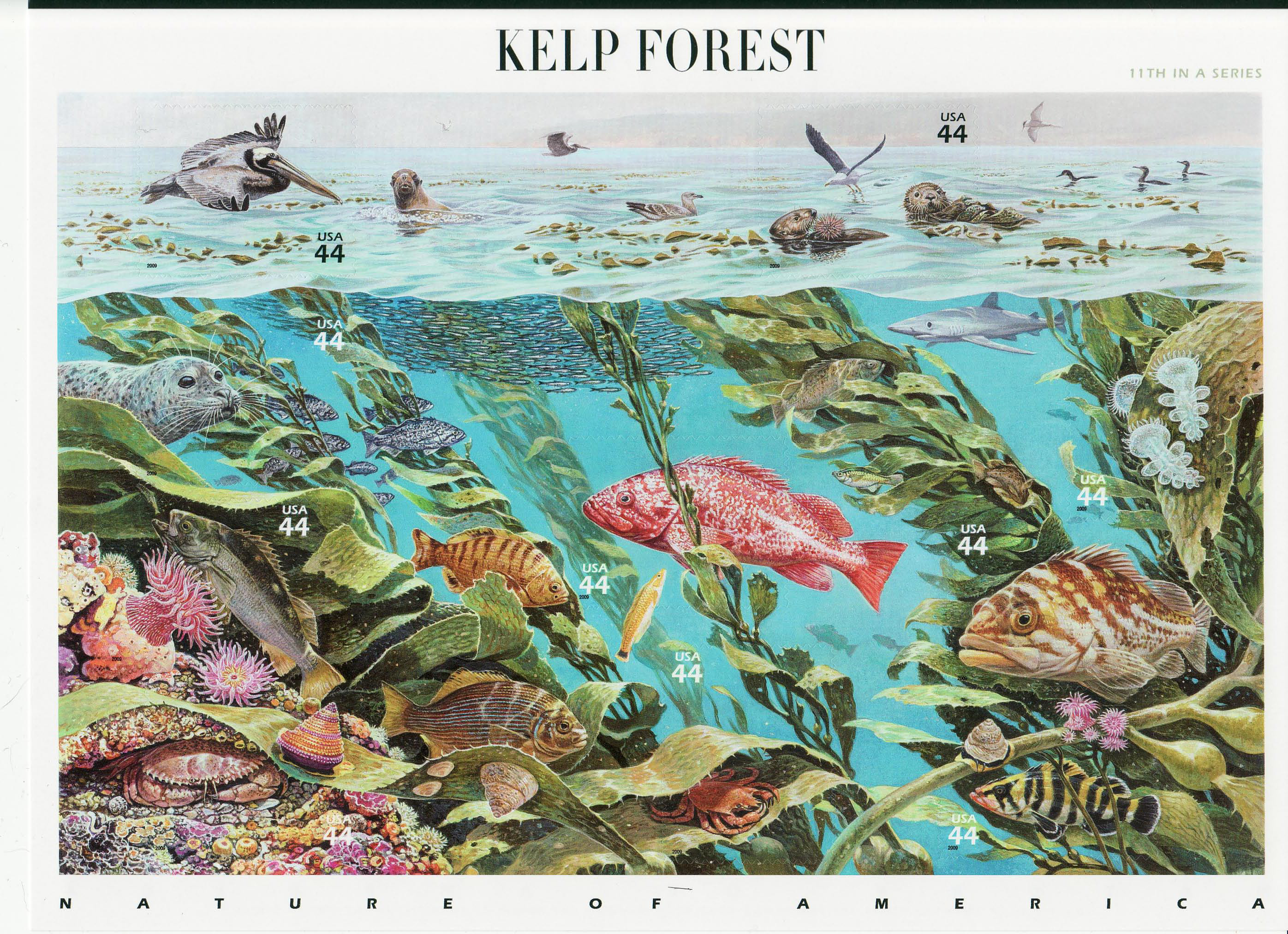 Kelp Forest stamp sheet
