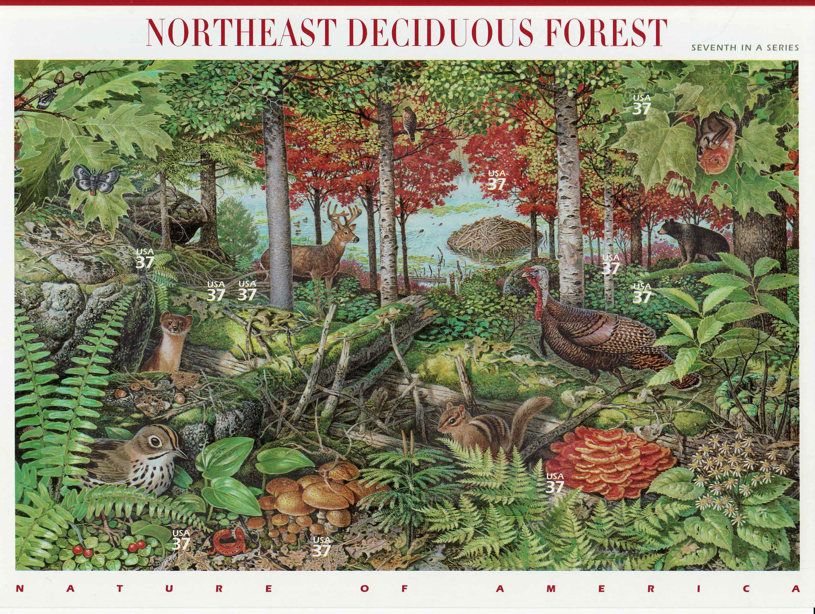 Northeast Deciduous Forest stamp sheet]