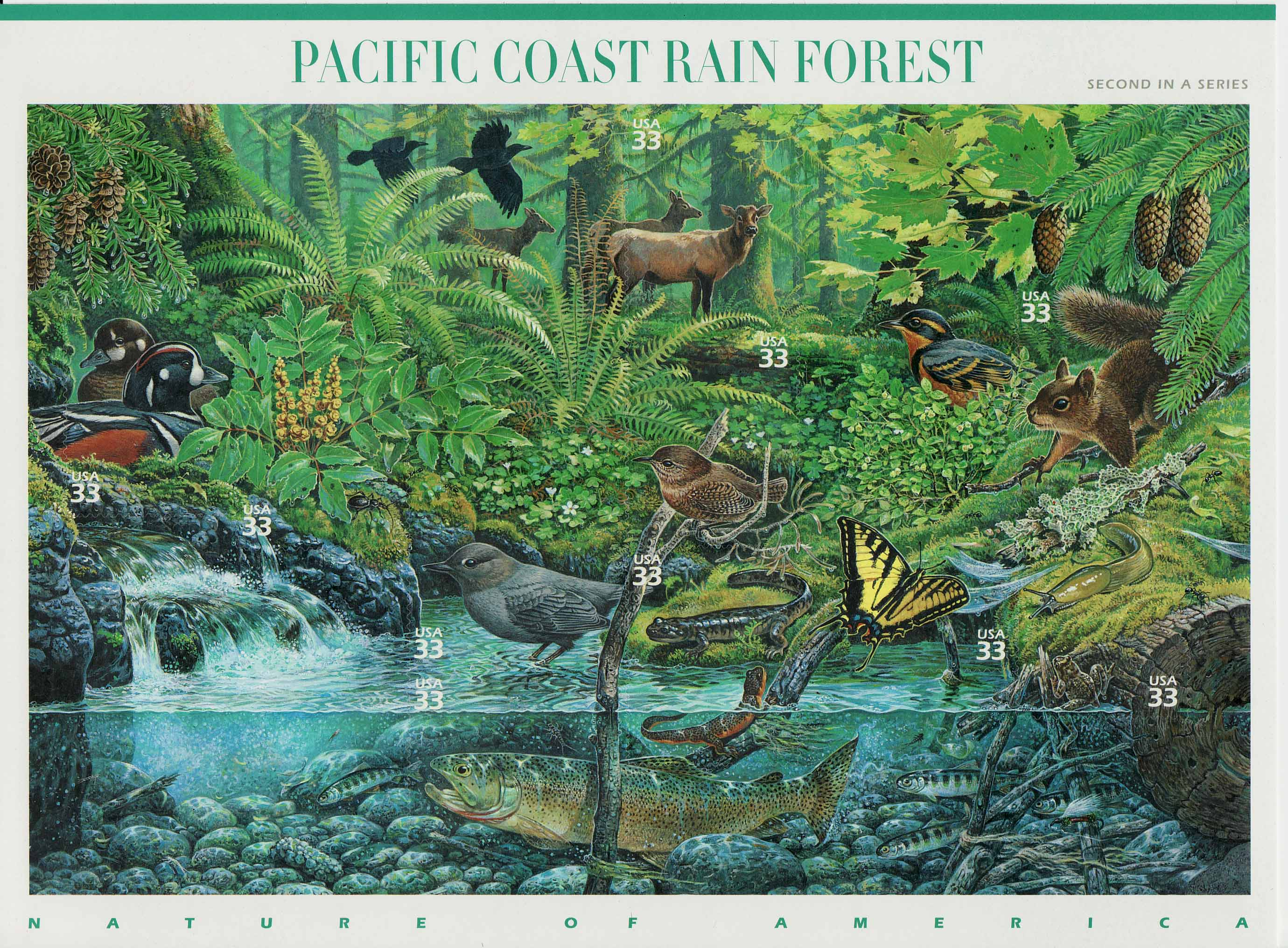 Pacific Coast Rain Forest stamp sheet