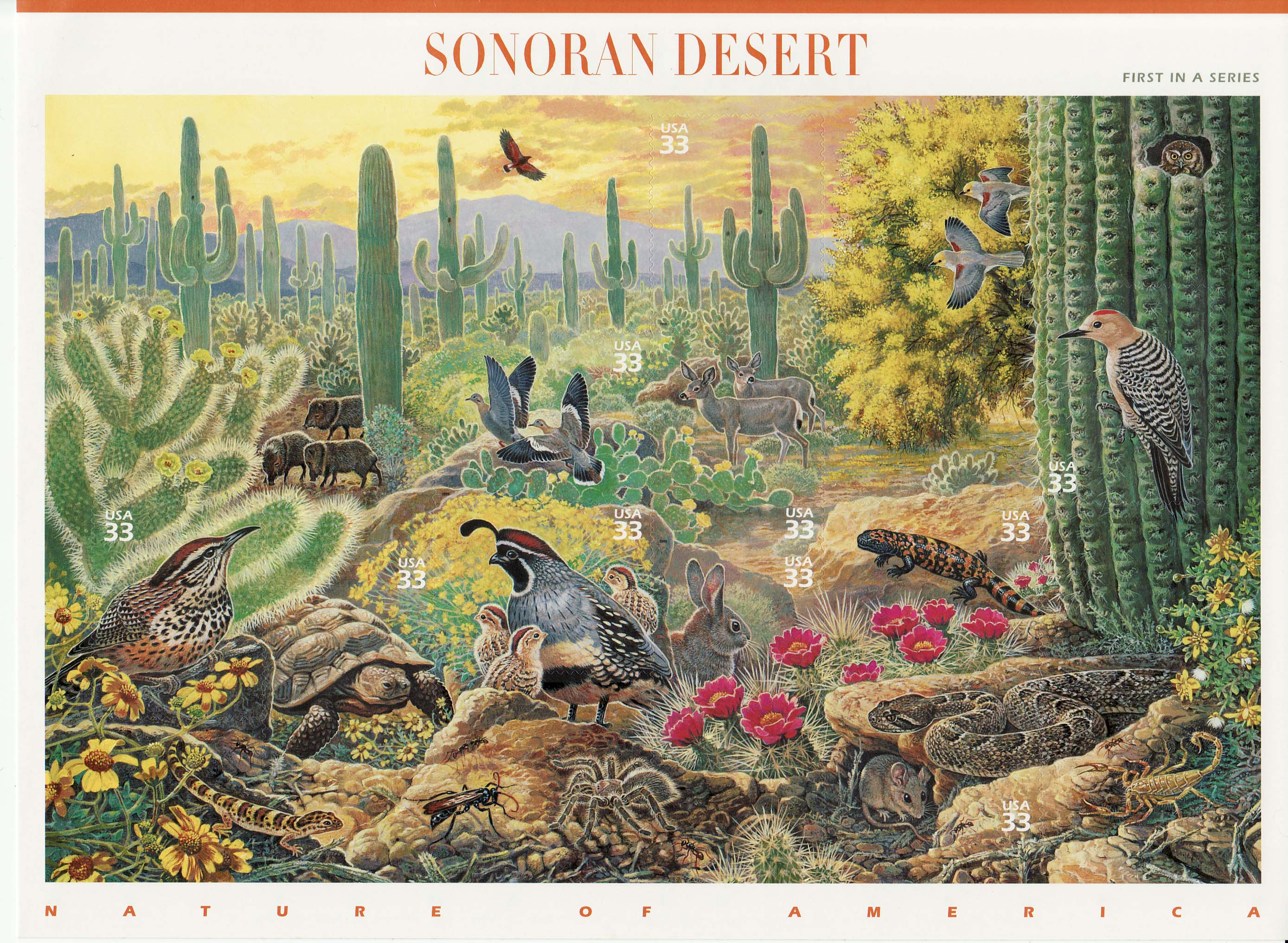 Sonoran Desert stamp sheet